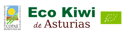 logotipo de ecokiwideasturias